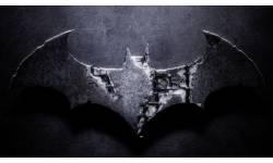 batman arkham asylum 2 Capture plein écran 13122009 172708.bmp