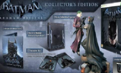 Batman Arkham Origins 12 07 2013 head collector