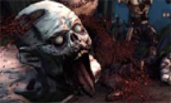 Borderlands zombie island head