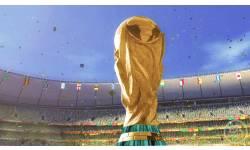 Coupe du Monde de la FIFA : Afrique du Sud 2010 8