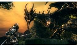 Dark Souls 12 06 2012 screenshot 3