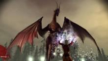 dragon-age-origins-playstation-3-ps3-110