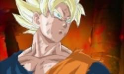 dragon ball raging blast 2 head 10