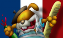 Drapeau France Head Delire
