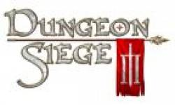 dungeon siege III head