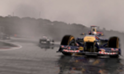 F1 2011 04 06 2011 head 3
