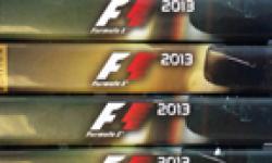 F1 2013 14 07 2013 head