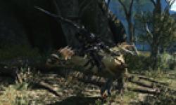 Final Fantasy XIV online head 12062012 03.png