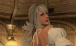 Final Fantasy XIV vignette 30012013