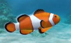 fish wii