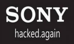 hack sony vignette 20062011 001