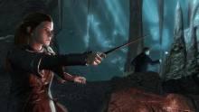Harry-Potter-Reliques-Mort-Deuxième-Partie_23-06-2011_screenshot (4)