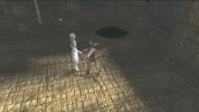 ICO-&-Shadows-of-the-Colossus-Classic-HD_screenshot-10 (4)