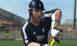 International Cricket 2010 icon