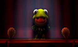 LittleBigPlanet 2 DLC Muppets head 21012012 01.png
