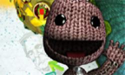 LittleBigPlanet 2 head 8