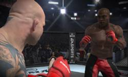 MMA head