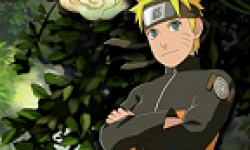 Naruto Shippunden Narutimate Storm 2 Ultimate Ninja logo