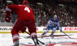 NHL 13 head 3