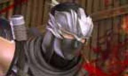 ninja gaiden 2 icon