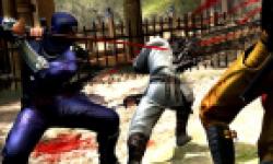 Ninja Gaiden 3 Head 120112 01