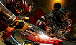 Ninja Gaiden 3 logo vignette 16.03.2012