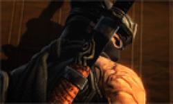 ninja gaiden 3 vignette head