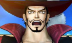One Piece Kaizoku Musou Head 2012 01 12 12 001