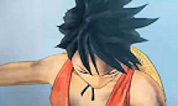 One Piece Pirate Warriors kaizoku musou logo vignette 20.02.2012
