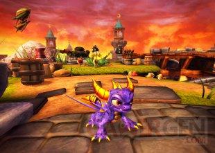 Skylanders Spyro's Adventure (31)