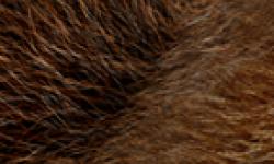 Street Fighter x Tekken Head 01 08 2011 01