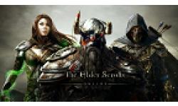 The Elder Scrolls Online ICONE