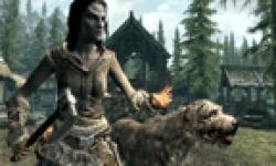 The Elder Scrolls V Skyrim 18 08 2011 head 2