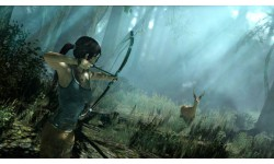 Tomb Raider 15 08 2012 screenshot 5