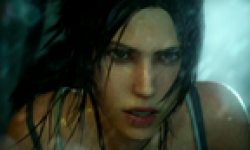Tomb Raider vignette 17012013