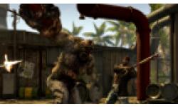 Vignette head Dead Island Riptide