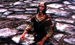 vignette head the elder scrolls v 5 skyrim bug 05022012