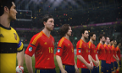 Vignette UEFA Euro 2012