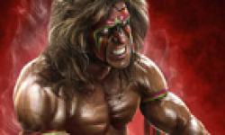 WWE 2K14 15 07 2013 head