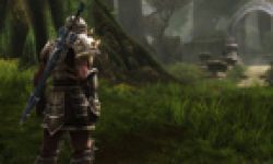 Kingdoms of Amalur Reckoning head 6