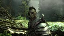 The-Elder-Scrolls-V-Skyrim_18-04-2011_screenshot-3