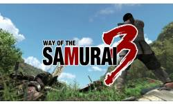 way of the samourai 3 gamebridge screenshot captures 54